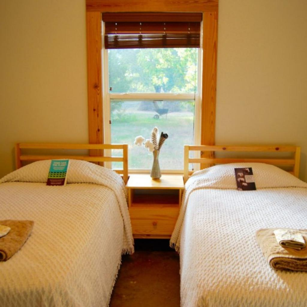 Guest Beds at Koinonia Farm