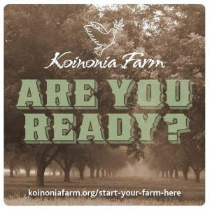 Are You Ready? Pecan Orchards at Koinonia Farm