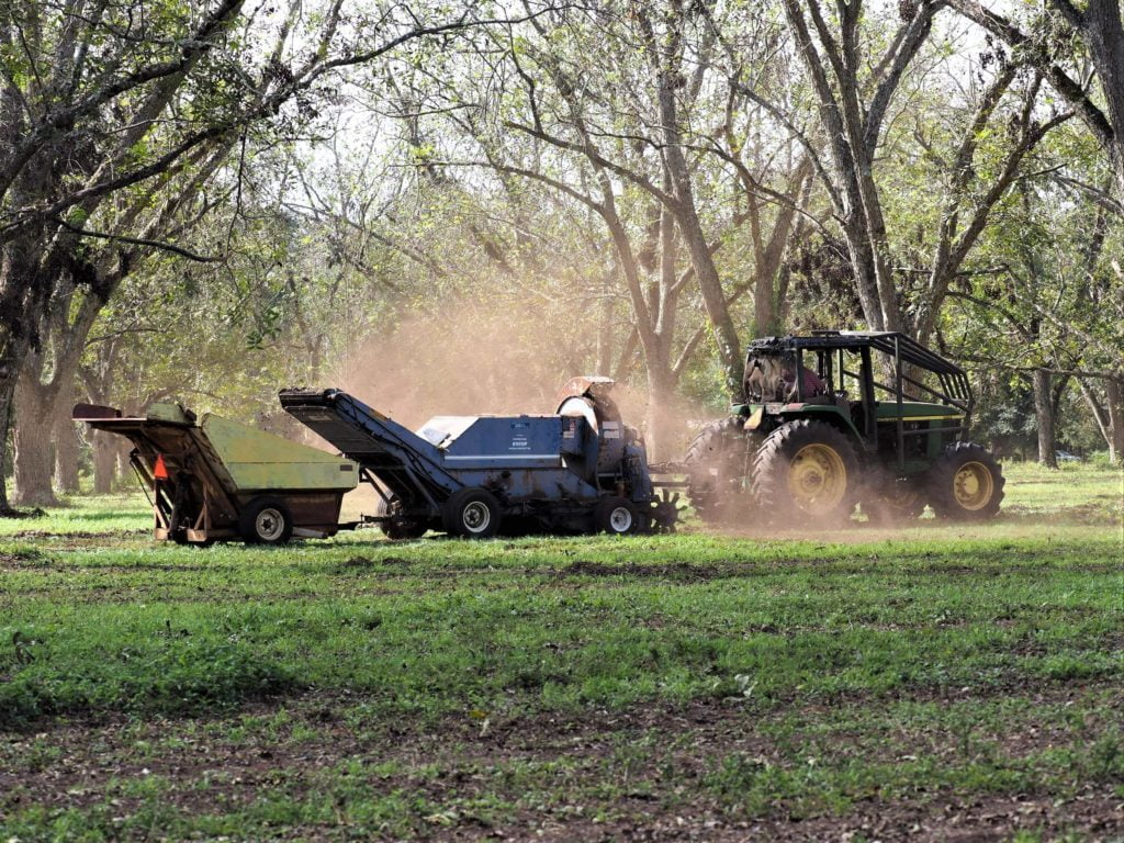Pecan Harvesting Equipment in the Orchards