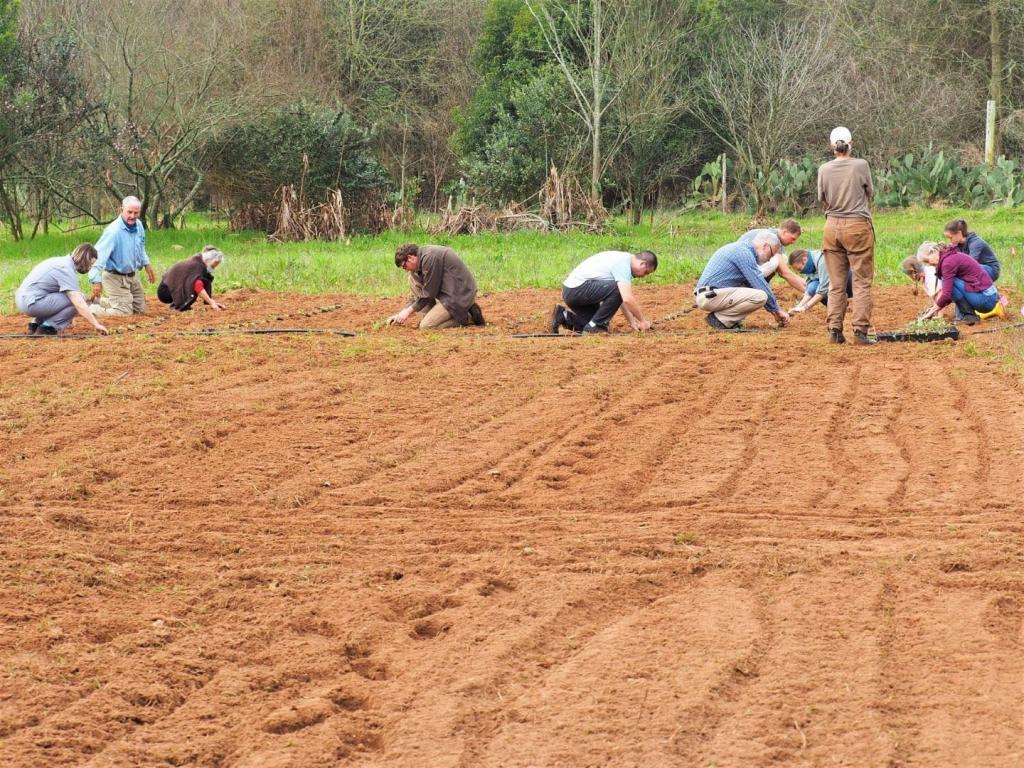 Community Gardening Day